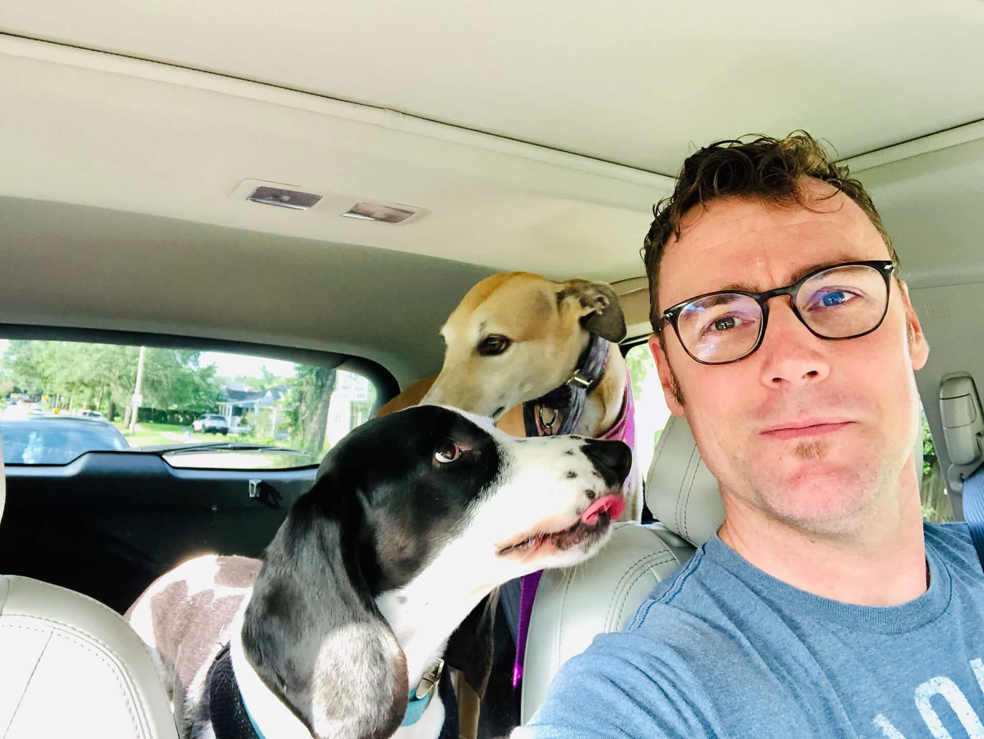 Bellini and Pukini, John's high hound and low hound...